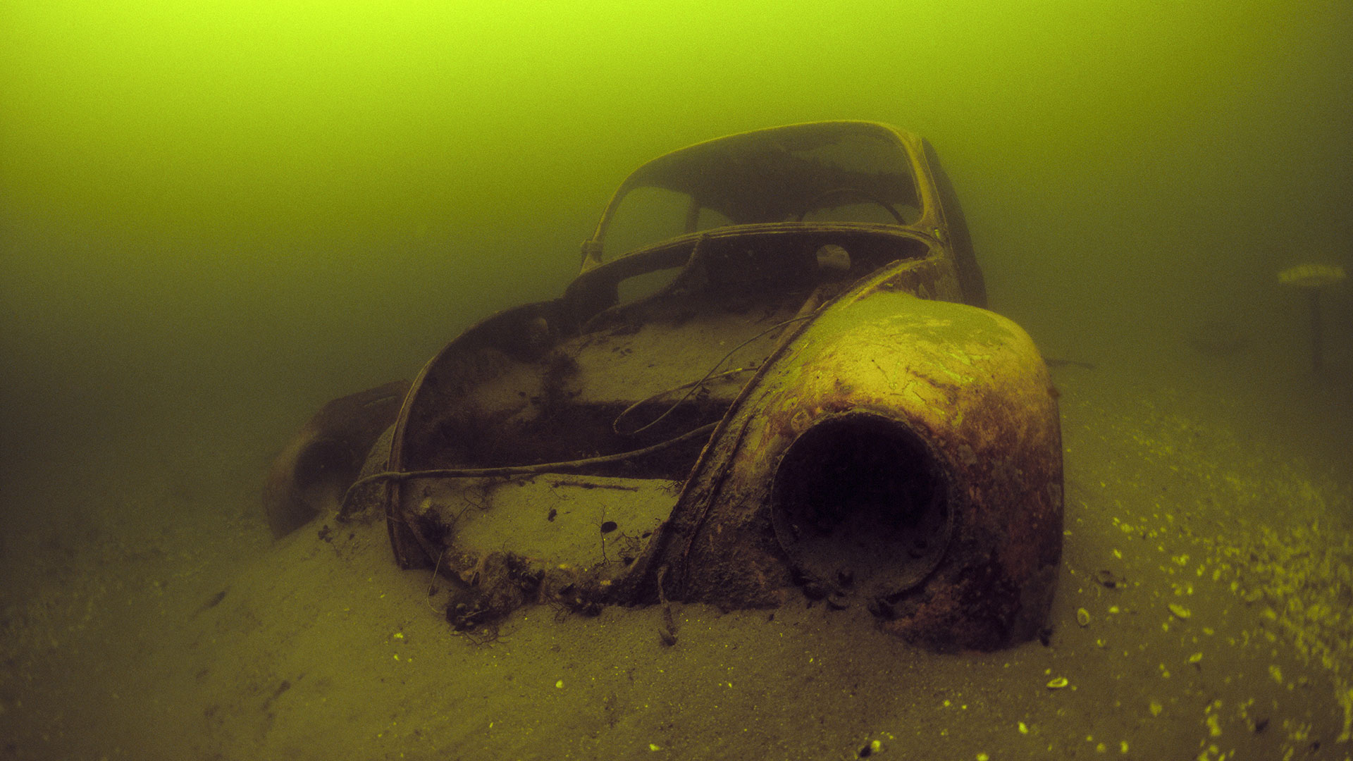 Punch Buggy Car >> Rust and Reef: Exploring Underwater Car Ruins - The Drive